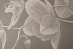 malad-orkide-1024