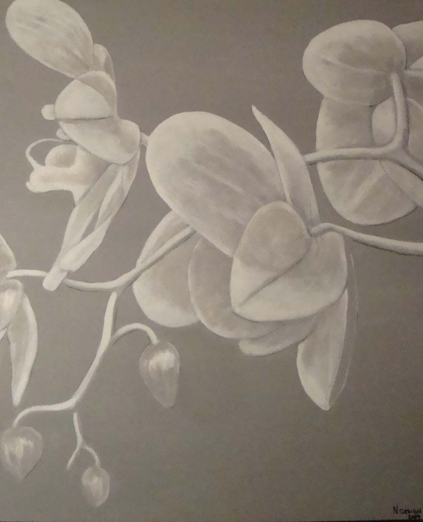 monokrom målning- orkide